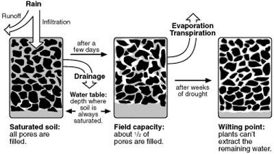 changes-in-soil-water