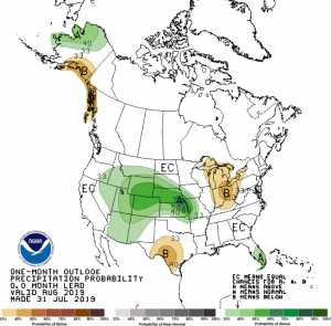 CPC August 2019 Precipitation Outlook